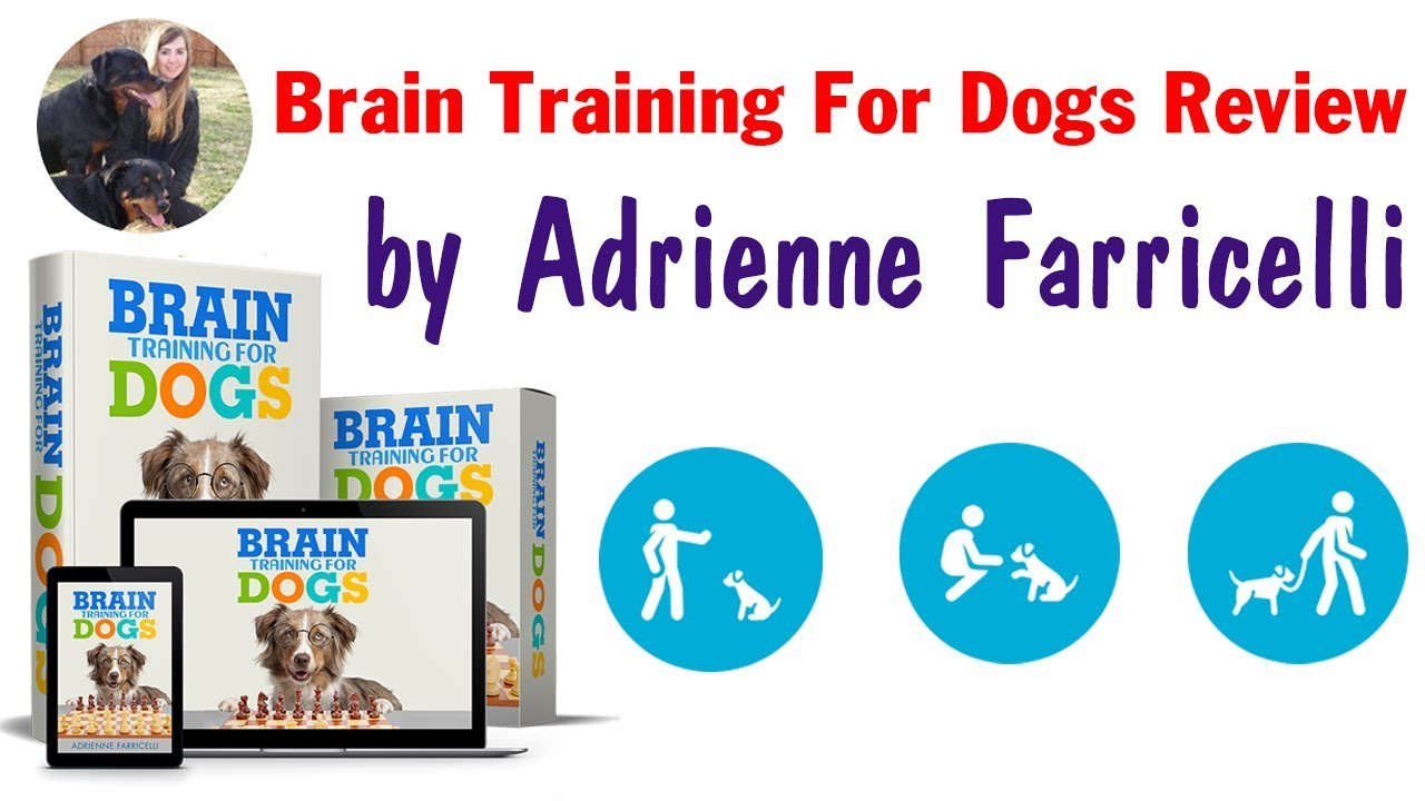 Description Obedience Training Commands  Brain Training 4 Dogs
