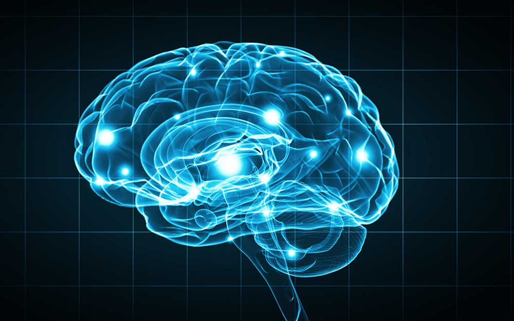 01-A-New-Study-Reveals-That-Brain-Games-Might-Just-Be-Cranial-Crud_294471983-ESB-Professional-ft